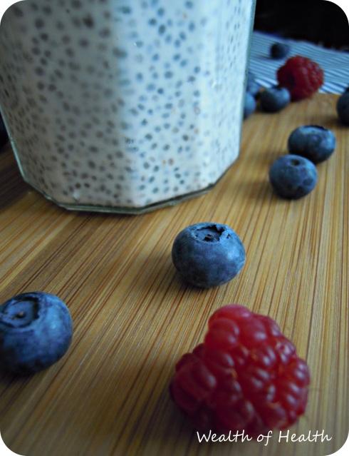 Chia seed pudding 2